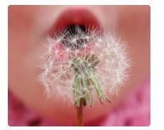 alergie a kontaktní čočky