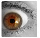novinky kontaktní čočky