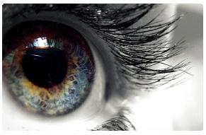 novinky kontaktní čočky 2013